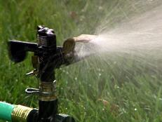 tips for watering lawn in summer