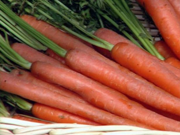Bright Orange Carrots are Ready for Harvest