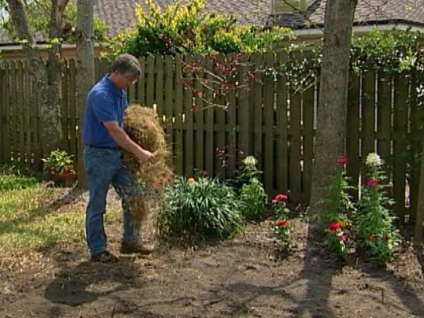 Lightly mulch with hay or straw over the seed. Pull out handfuls of straw or hay at a time and scatter it over the seed. Be sure to spread out the clumps to cover the ground evenly.