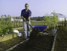Prepare Soil in a Sunny Spot to Grow Broccoli