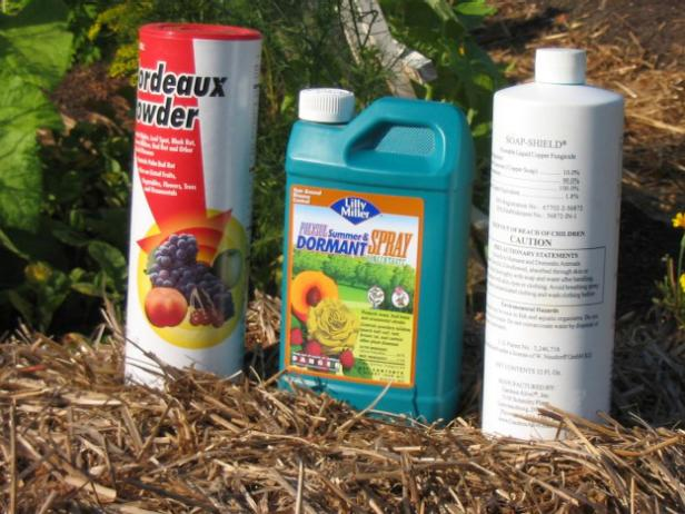 fungicides and bactericides for organic gardens