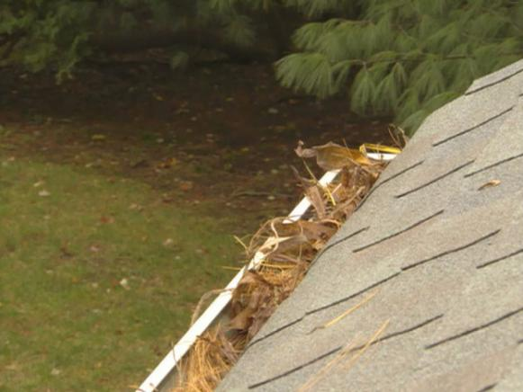 common cause for roof leaks are clogged gutters