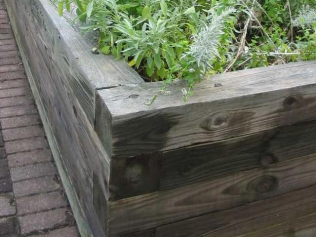 raised beds are good for many older gardeners