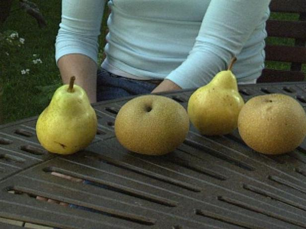 Asian Pears are not Pear Shaped