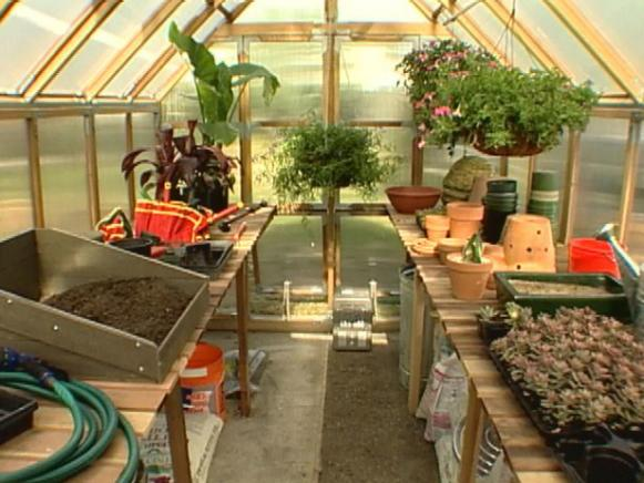 greenhouse gets organized for healthy plants