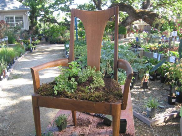 thrift store chair is unique addition to garden