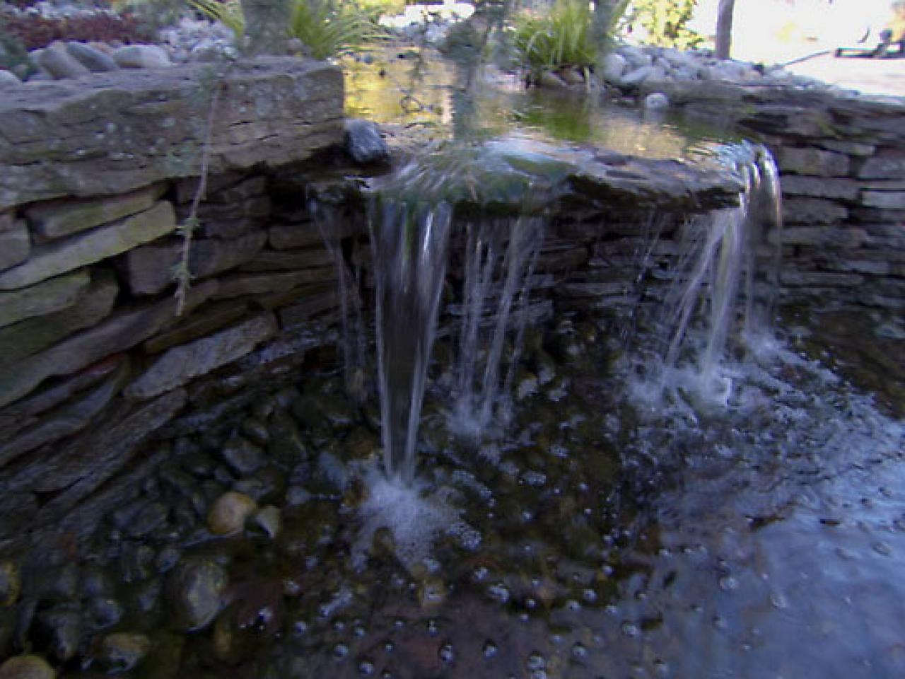 10 things you must know about ponds diy for Garden pond overflow design