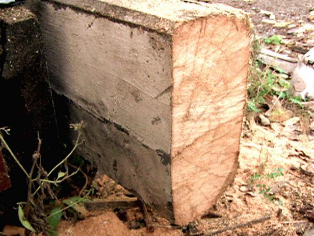 dmam108_1fa_timber