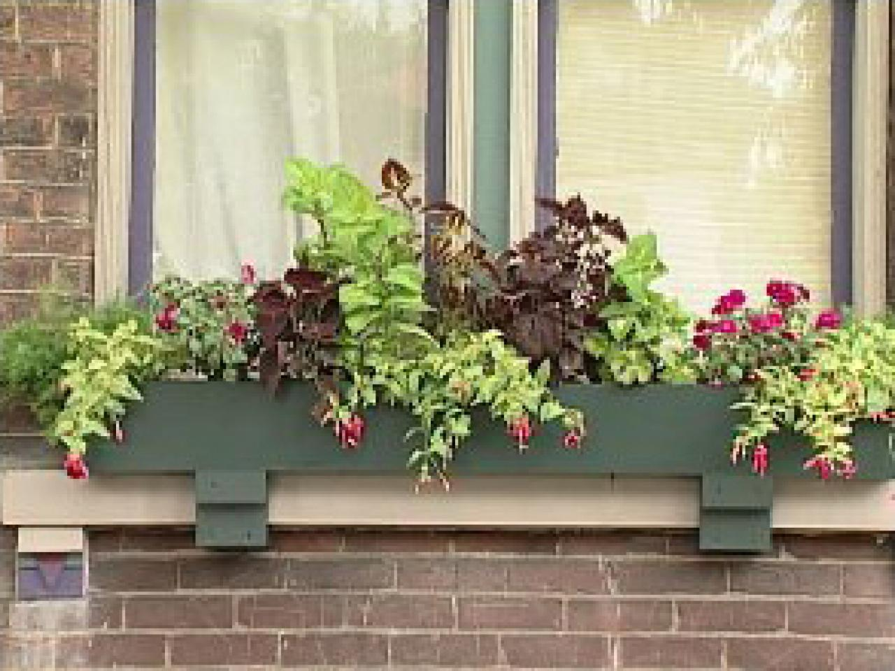 Planting Window Boxes For Shade Diy