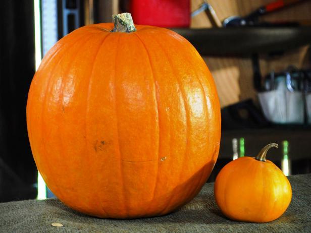 Small Pumpkin Royalty Free Stock Photo - Image: 1428275
