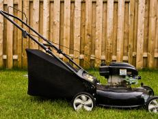 Lawnmower by fence