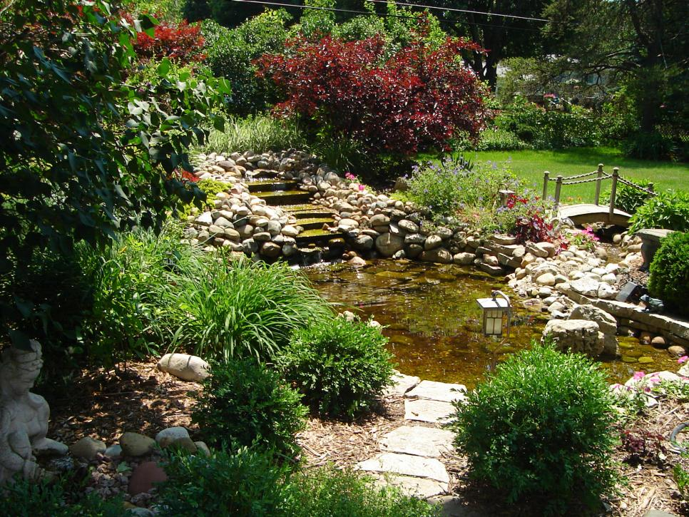 Our favorite diy gardens from rate my space diy for Garden with pond
