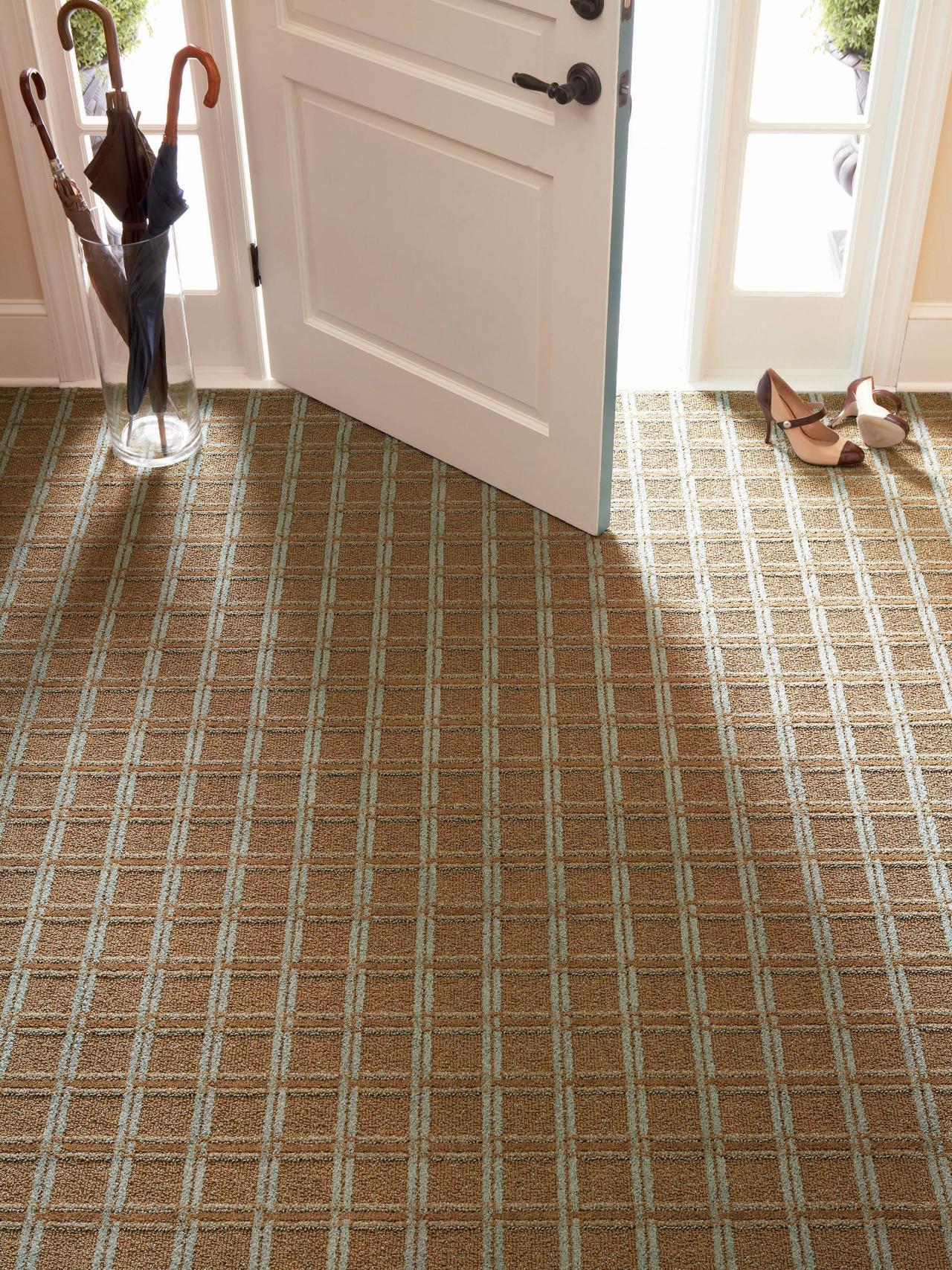 Simple Carpet-Maintenance Steps   DIY