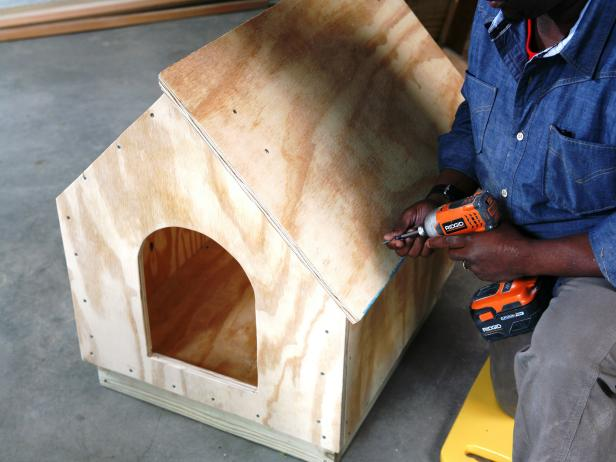 Constructing a dog house, while attaching the wood roof panel using a drill.