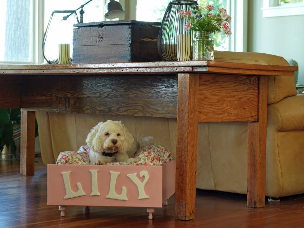 CI-Susan-Teare_Dog-Bed-Made-From-Drawer_s4x3