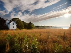 2012 Blog Cabin Landscape