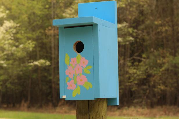 MR_Mick-Telkamp-diy-cluebird-house_s4x3