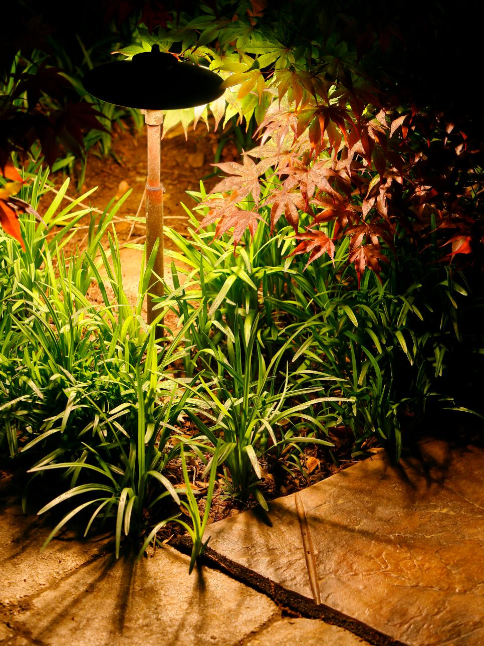 22 Landscape Lighting Ideas | DIY