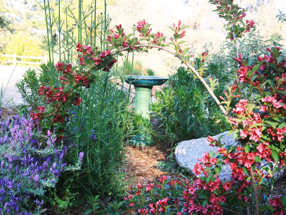 Cottage Style Garden Ideas find this pin and more on home small garden ideas Well Planned Yard