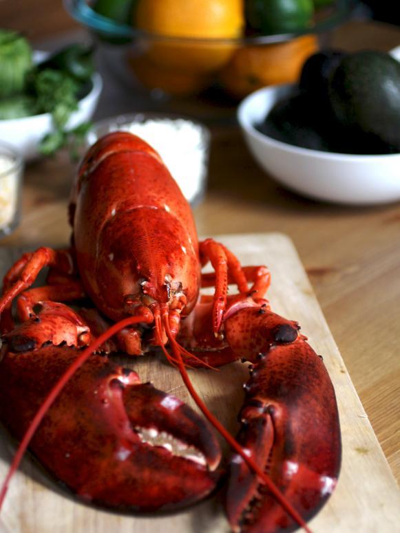 CI-Manvi-Droni_lobster_3x4