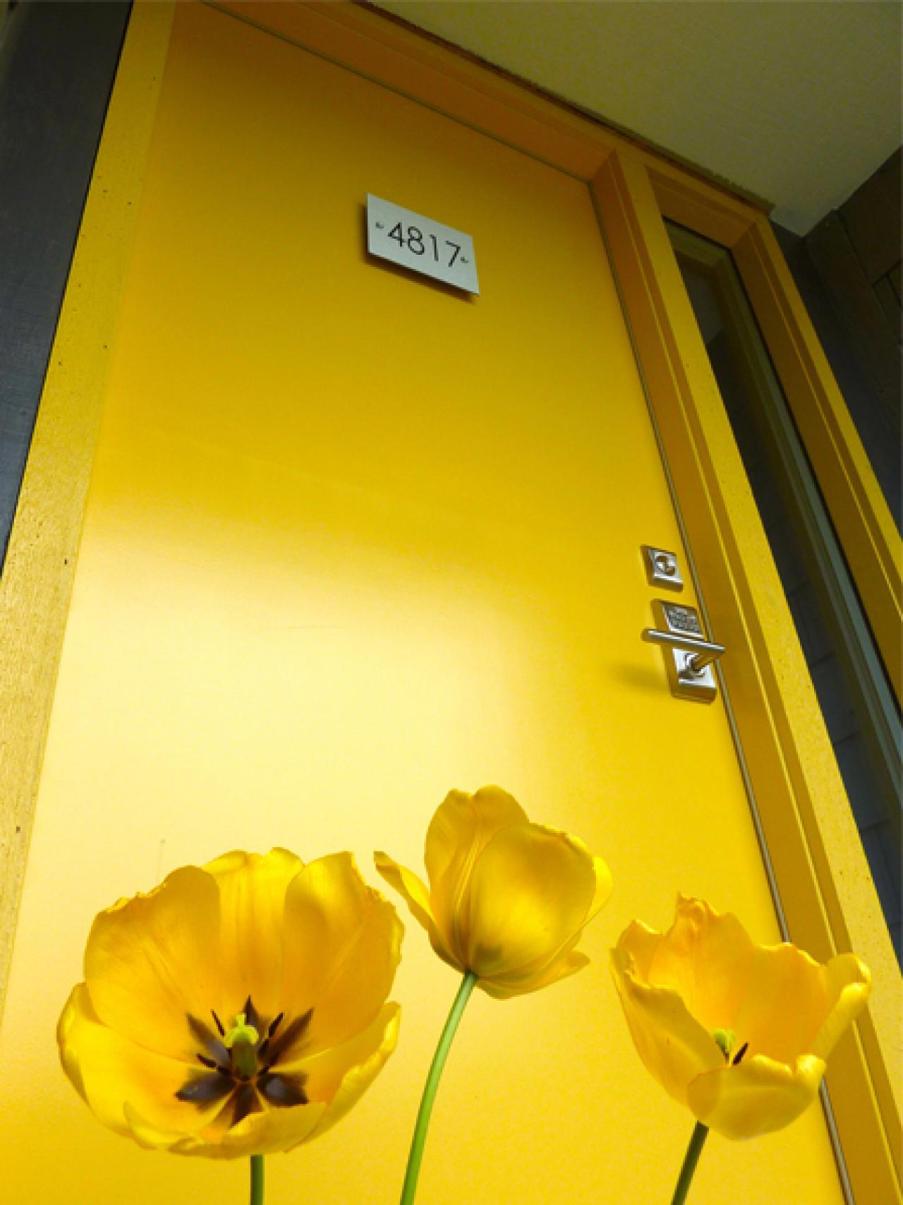 Popular colors to paint an entry door installing for Front door yellow paint