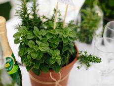CI-Michelle-Kim_garden-baby-herb-pot8_v