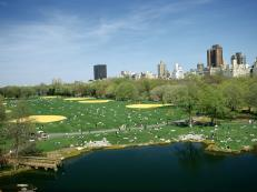RX-Central-Park-Great-Lawn_h