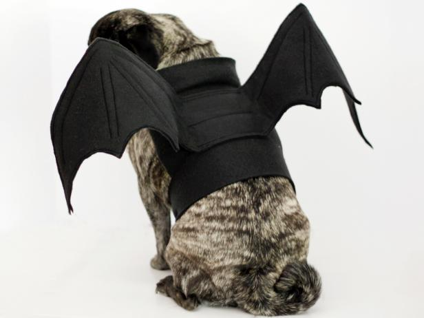 CI-Carla-Wiking_Halloween-dog-costume-bat-wings-back_h