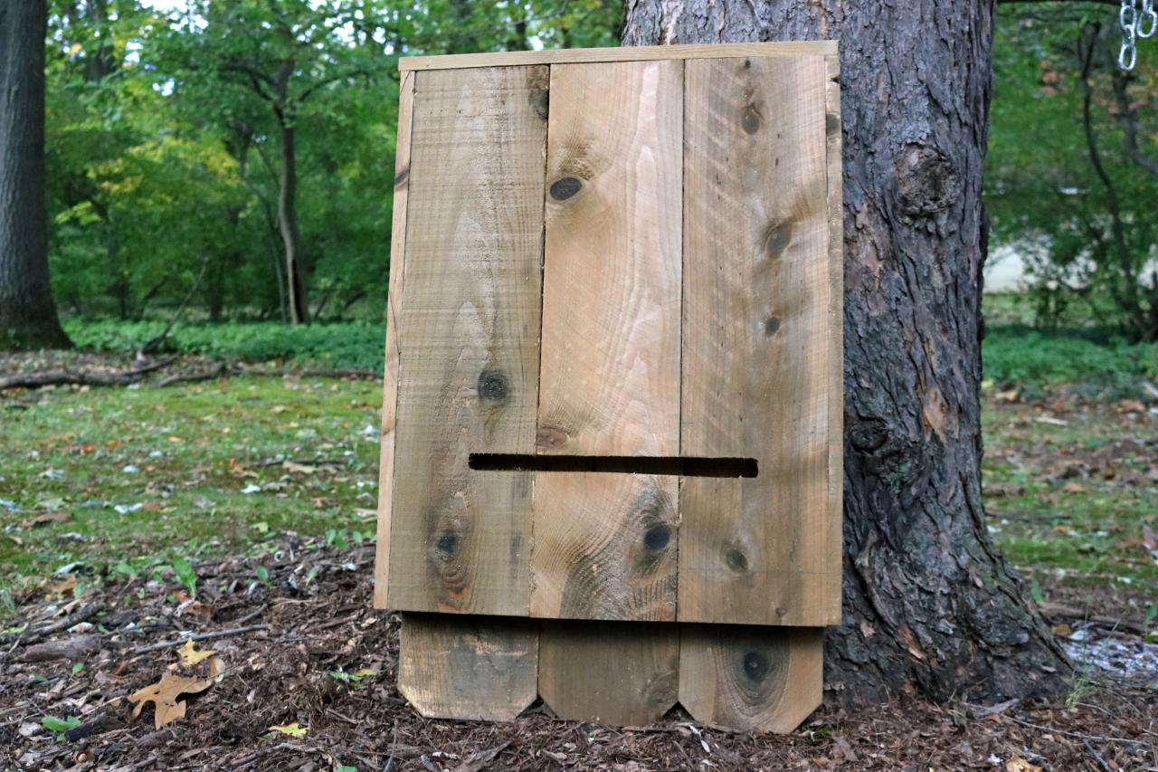How to Build a Bat House how tos DIY