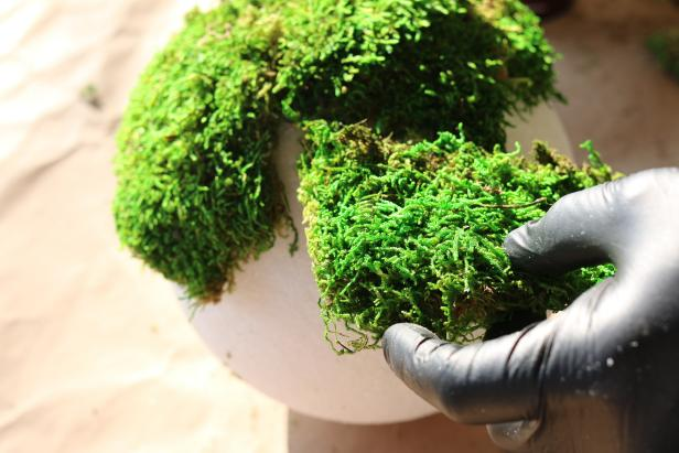 Cover entire surface of each sphere with moss by slightly overlapping pieces, covering the sphere in sections.