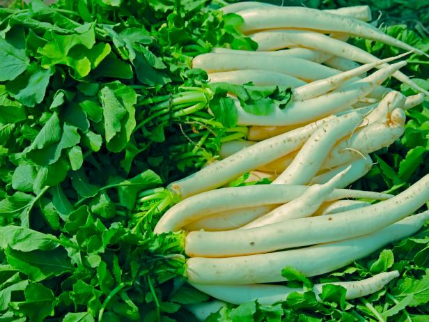 Green vegetable white radish raphanus sativus growing in field,