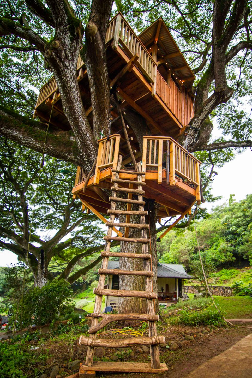 Explore three incredible treehouses the treehouse guys diy for Three tree treehouse plans