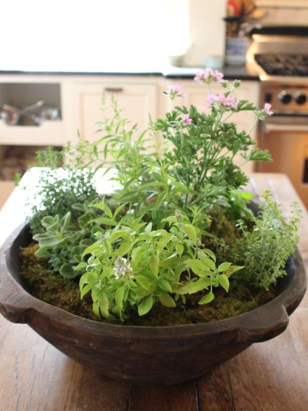 Rustic Bowl Planter