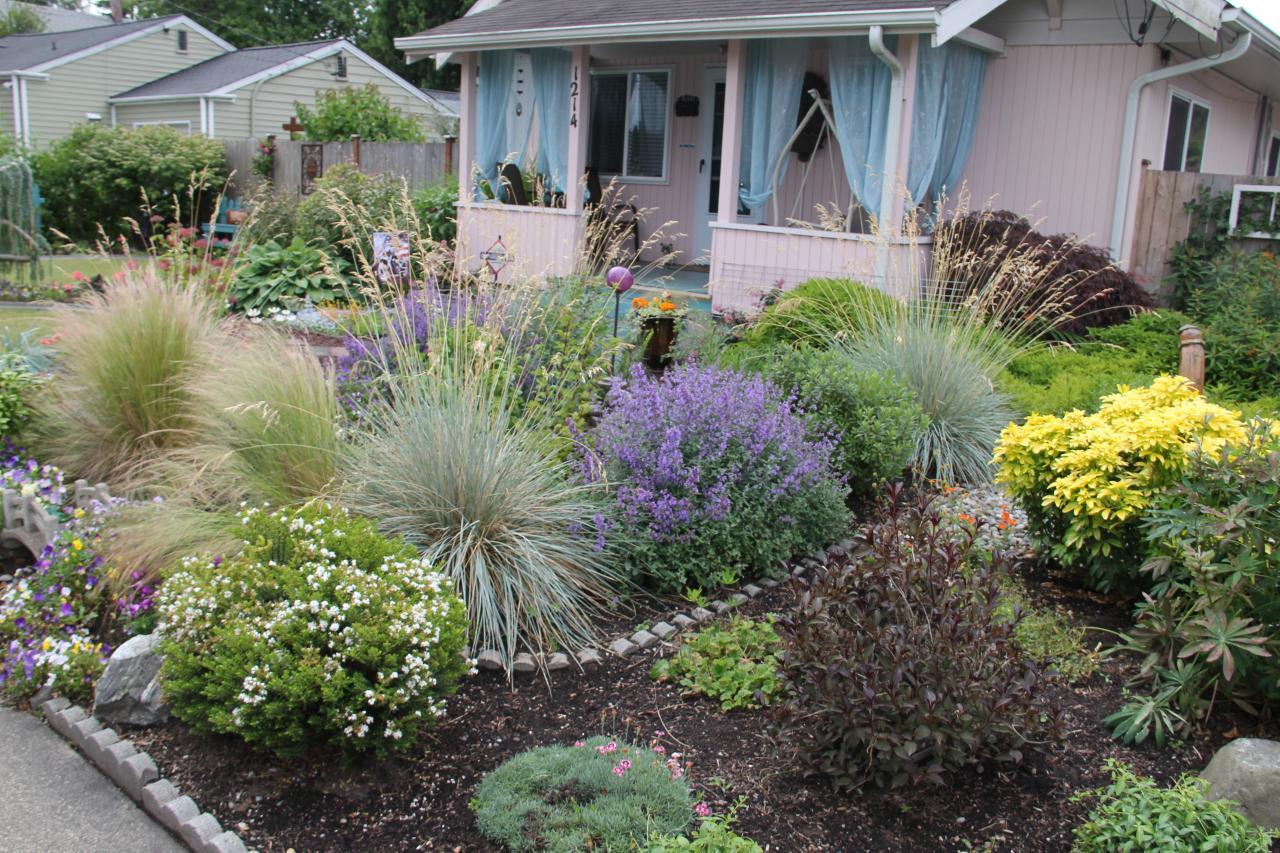 How to Build a Rain Garden DIY Network Blog Made