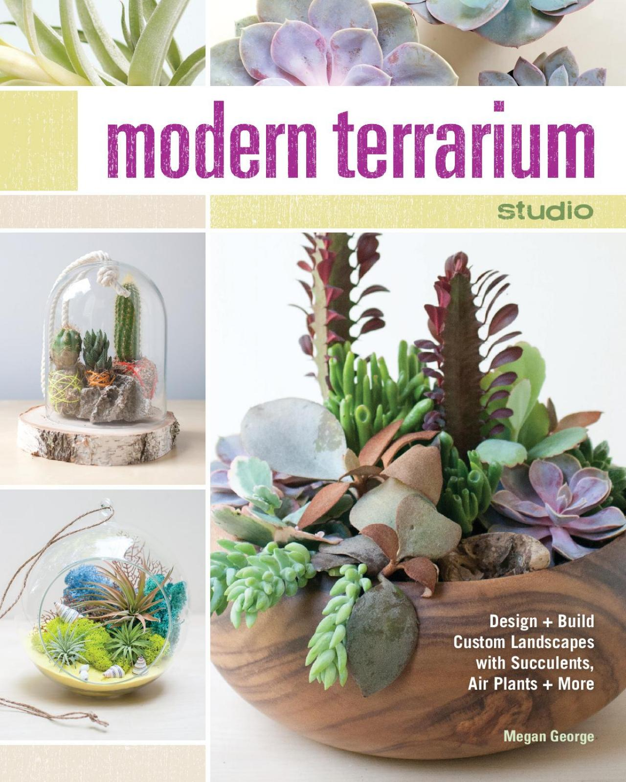 how to make a tabletop succulent terrarium diy network blog