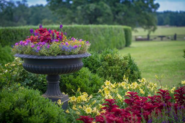 Urn In Shrub And Perennial Border