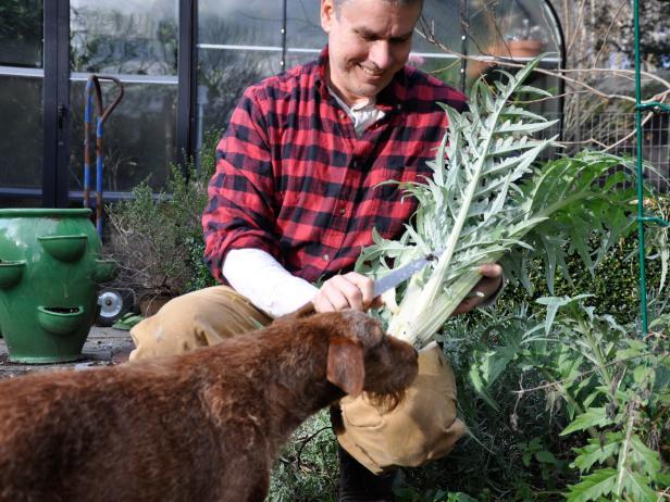 Matt Mattus, plantsman and journalist at GrowingWithPlants.com