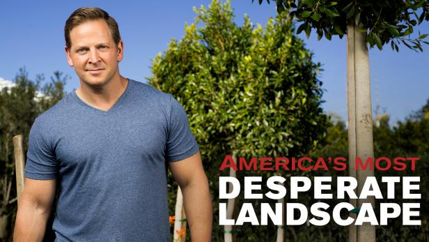 america s most desperate landscape diy