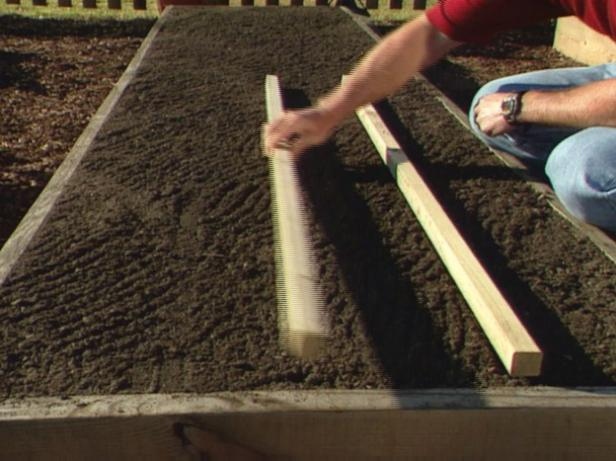 How to Build a Parsnip Bed