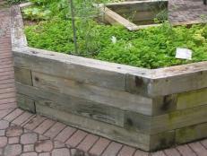 Ordinaire Easier Gardening For Seniors