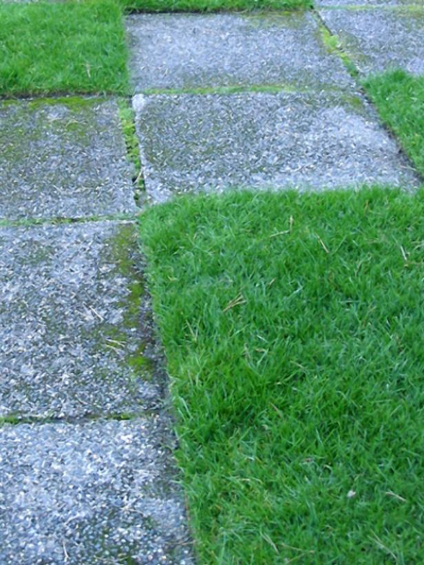 hgPG-2156655-Outdoor_checkerboard_turf