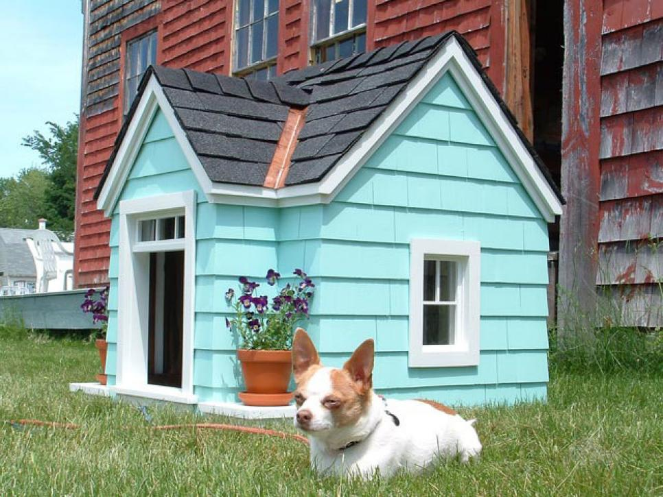 Dog House Plastic Barrel Best House Interior Today