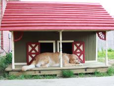 Grand Prize Winner Barn Style Doghouse