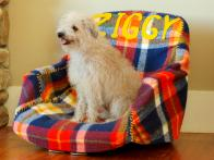 How to Make a Pet Bed Out of an Office Chair