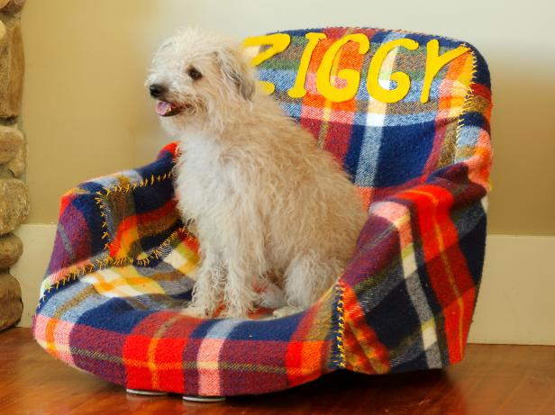 CI-SusanTeare_Office-Chair-Turned-Dog-Bed_s4x3