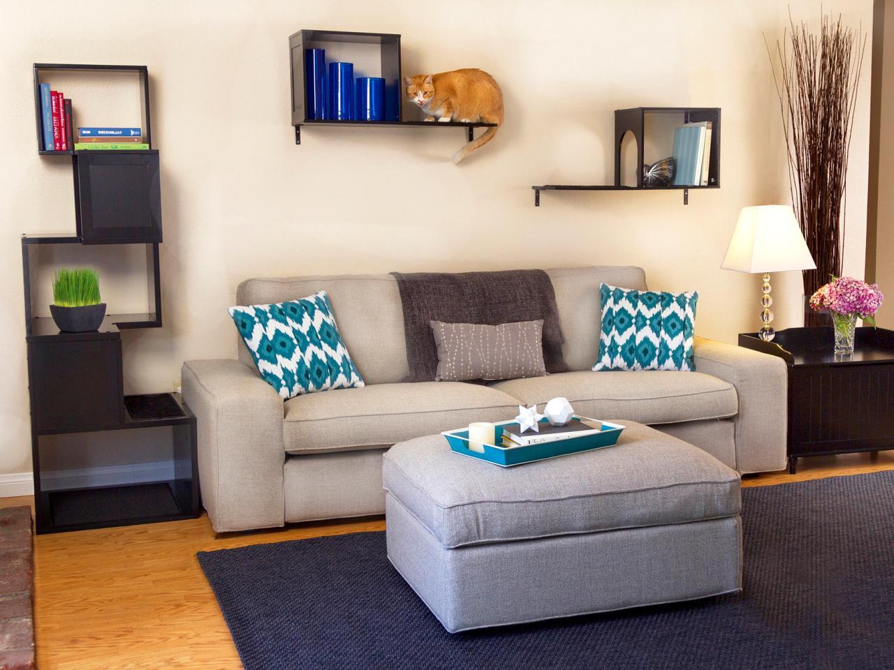 Design Ideas Your Cat Will Love HGTVs Decorating Design Blog HGTV