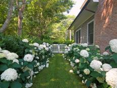 Perennial Garden Design Ideas Diy