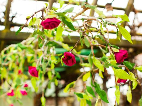 How to Make Crepe-Paper Roses and Hanging Branches