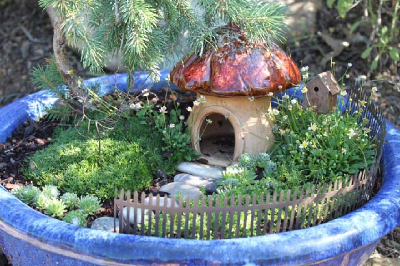 Charmant Fairy Garden Container