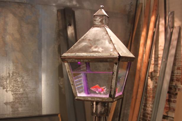 Old Street Lamp Used as Fish Tank